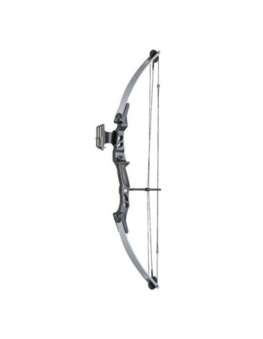 Hunting Bow / Leisure / Shooting 55 pound pulley - black and silver