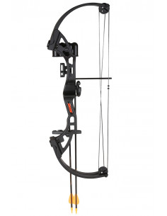 Bear Archery Brave 3 RH youth bow package