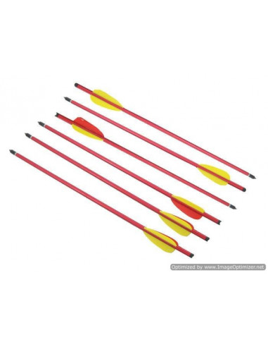 Pack of 6 arrows 20 inches (51cm)