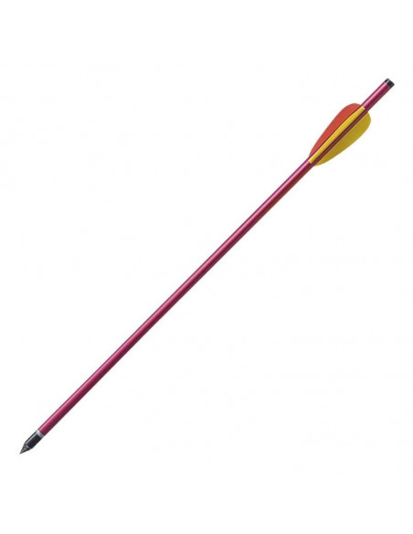 Pack of 6 arrows 16 inches (40.6cm)