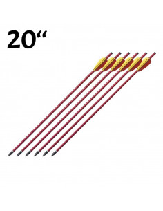 Pack of 6 arrows 20 inches...