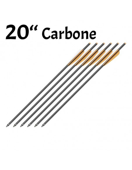 Pack of 6 bolts Carbon of 22 inches (55cm)